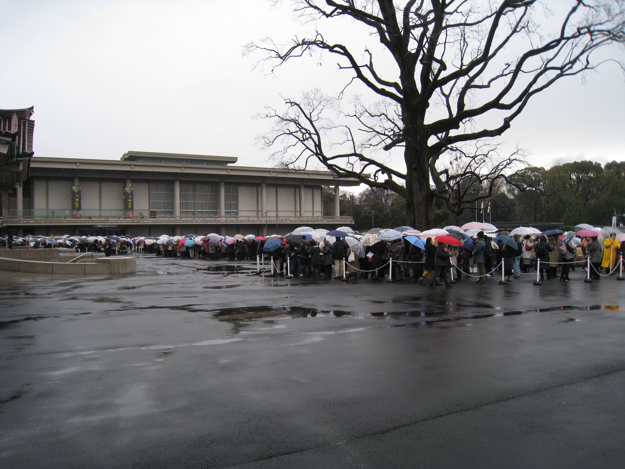 国立 混雑 東京 博物館